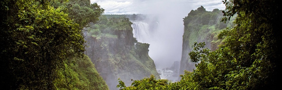 Victoria Falls Rain Forest